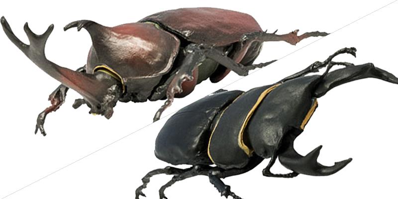 昆虫ハンター カブトムシ&クワガタ [エフトイズ・コンフェクト]