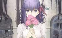 【トピックス】 「劇場版『Fate/stay night[Heaven's Feel] I.presage flower』」2017年10月14日公開決定!